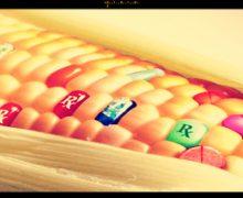 Bayer-Monsanto, concluso il merger: acquisita l'azienda Usa per 66 miliardi