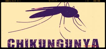 Lazio, ancora sei nuovi casi di Chikungunya, ora sono 92
