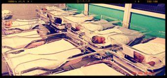 Istat, ancora in calo la natalità e la fecondità delle donne italiane