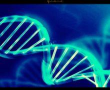 Nutrigenetica, nuovi test DNA svelano la predisposizione ai dismetabolismi