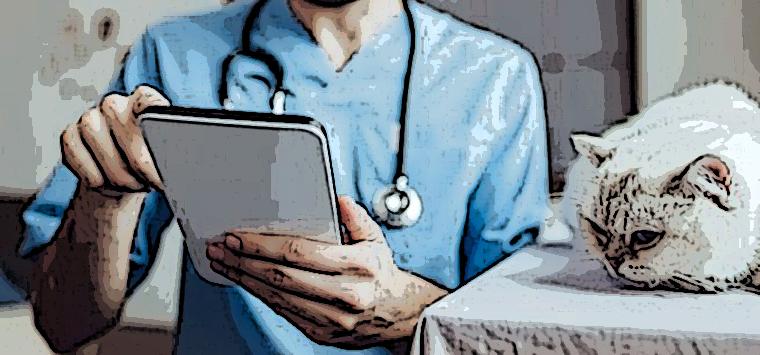 Ricetta veterinaria elettronica, il ministero aggiorna il manuale operativo