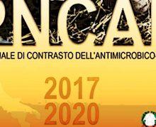 Antibiotico-resistenza, dal ministero protocollo 2019 su sorveglianza nazionale