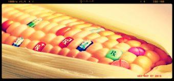 Bayer insiste e aumenta l'offerta per acquistare Monsanto
