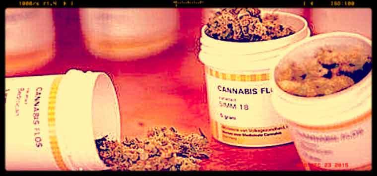 "Milani (Ordine Trieste): ""Cannabis in libera  vendita, no a sensazionalismi e fake news"""
