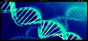 Farmaco anti-cancro efficace su adulti e bambini presto all'esame della Fda