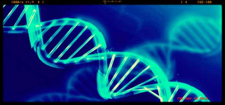 Test genetici in farmacia, biologi e genetisti sbarrano la strada