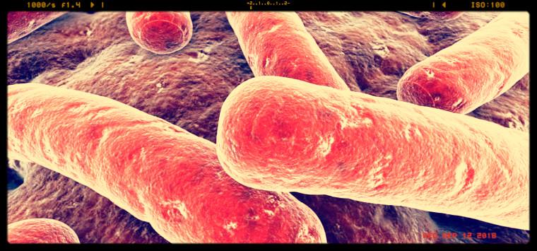 Tbc, team anglo-americano sviluppa il primo farmaco non antibiotico