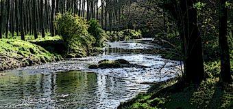 Studio olandese, boom di residui di farmaci nei fiumi, rischio ambientale mondiale