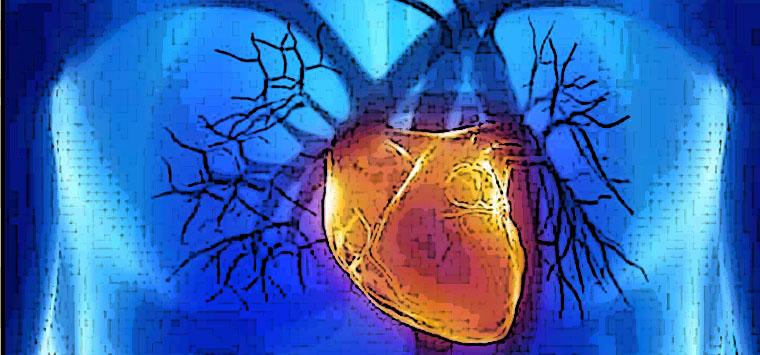 Scompenso cardiaco, campagna di informazione Novartis su urgenza e continuità terapeutica