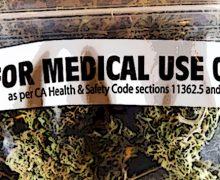 Preparazioni a base di cannabis, circolare di chiarimenti del ministero