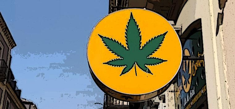 Passa emendamento su cannabis light, via libera a commercio sotto lo 0,5% di Thc