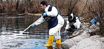 Allarme ambiente, cresce l'inquinamento da farmaci degli ecosistemi di acqua dolce