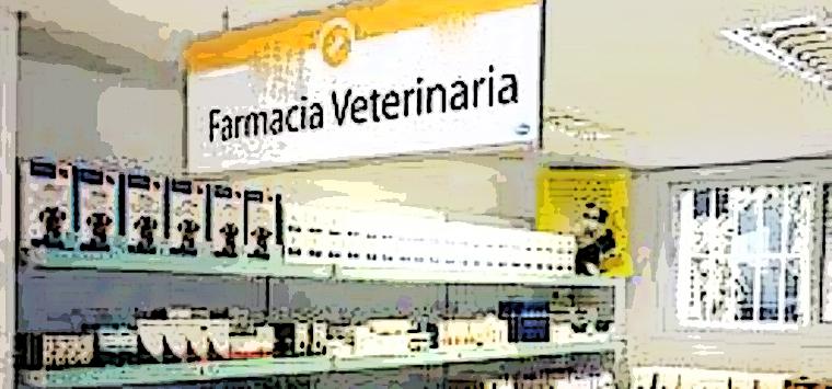 Estorsioni a carico di una farmacia veterinaria nel Napoletano, sette arresti