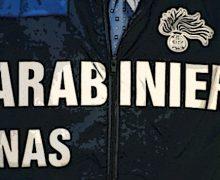 Farmaci senza fustella, i Nas denunciano due farmacisti a Reggio Emilia e Brescia