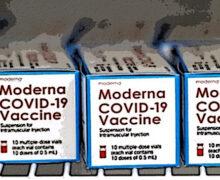 Covid e sue varianti, Moderna punta a un unico vaccino polivalente