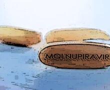 Molnupiravir, al via anche in Italia i test sul farmaco sperimentale anti-Covid
