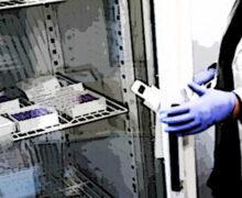 Ema, via libera a conservare il vaccino Pfizer a temperature da congelatore standard