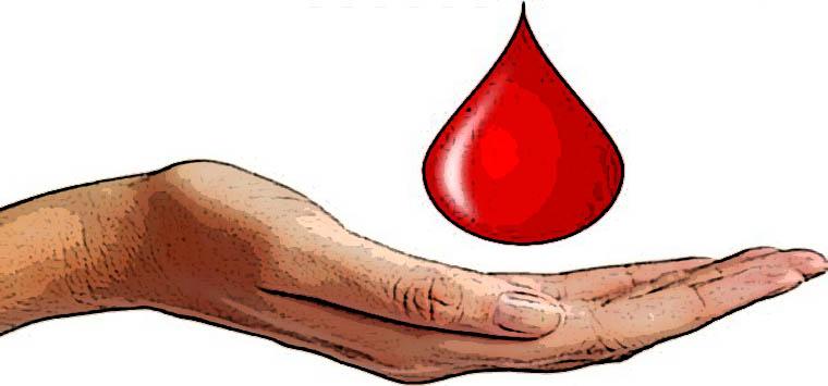 """Ordine Napoli, nuovo progetto solidale: parte raccolta """"Una goccia di sangue per tutti"""""""